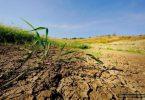 Украина теряет 20 млрд. грн. ежегодно из-за деградации почв